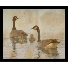 More about the 'Geese & Gosling Collage' product