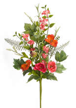Moss Rose Bush (Set of 6)