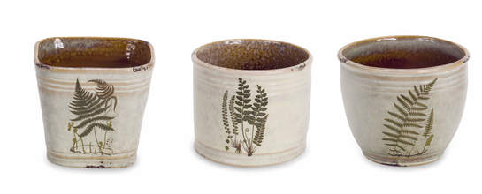 Fern Pot (Set of 6)