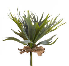 "Foliage Plant (Set of 6) 14""H Polyester/Plastic"