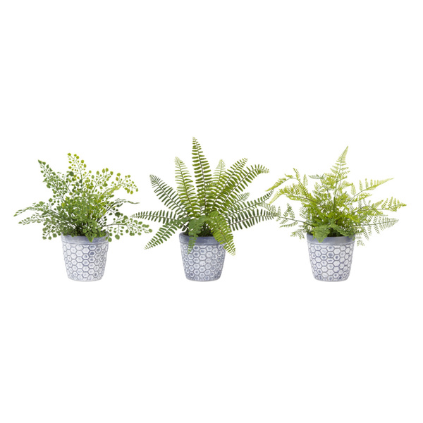 "Fern Potted (Set of 6) 11.5""H Plastic"
