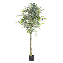 More about the 'Varigated Ficus Tree Potted 5.5'H Polyester' product