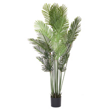 More about the 'Palm Tree Potted 6'H Polyester' product