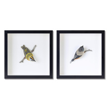 "More about the 'Bird Shadow Box (Set of 2) 12"" x 12""H MDF/Resin' product"
