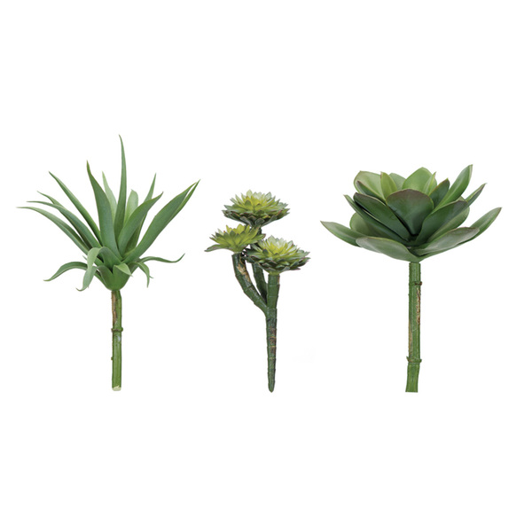"Succulent (Set of 12) 7""H, 8""H, 8.5""H Plastic"