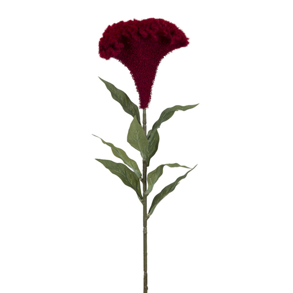"Celosia (Set of 12) 27""H Plastic/Polyester"
