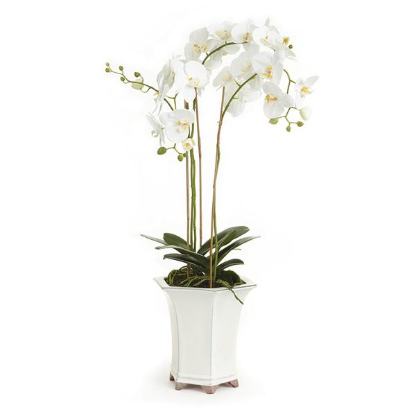 Barclay Butera Phalaenopsis In Ceramic Pot 36 Quot American