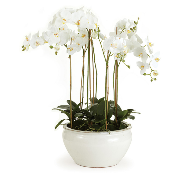 Barclay Butera Phalaenopsis In Ceramic Bowl 36""