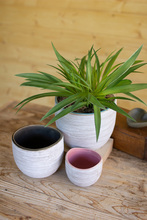 More about the 'Set Of Three Ceramic Planters' product