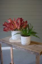 More about the 'Set Of Two Terrazzo Planters' product