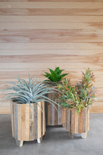 More about the 'Set Of Three Natural Recycled Wood Round Planters' product