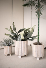 More about the 'Set Of Three White Washed Recycled Wood Round Planters' product