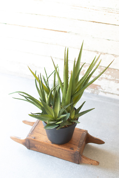 Artificial Potted Aloe Cluster