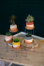 More about the 'Set Of Five Color Dipped Clay Pots With Metal Bases' product