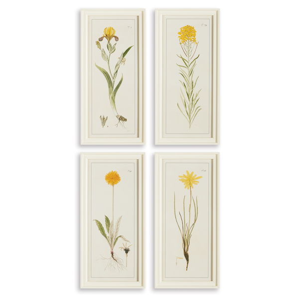 Yellow Flower Prints, Set Of 4