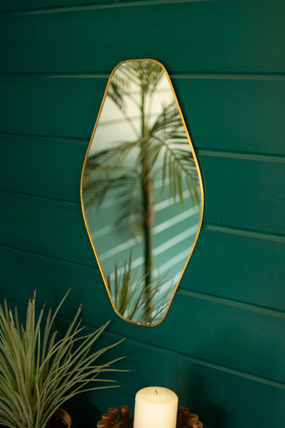 Brass Framed Organic Shaped Mirror