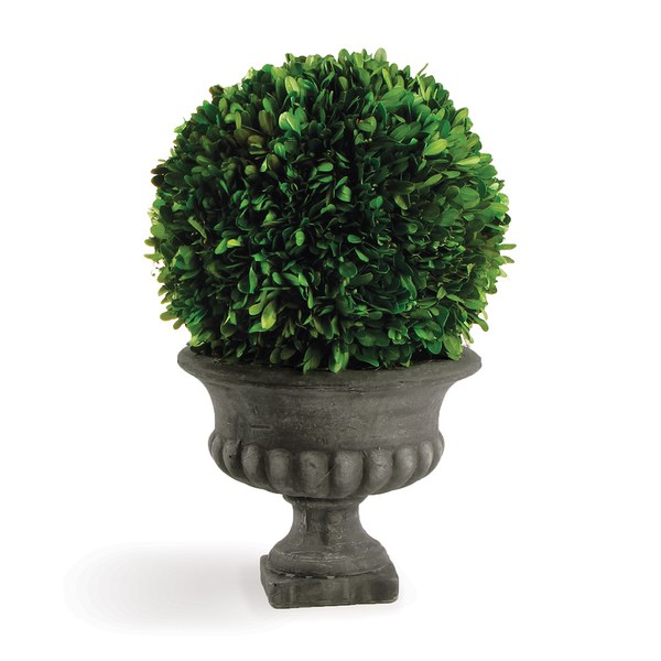 Boxwood Ball In Urn 10""