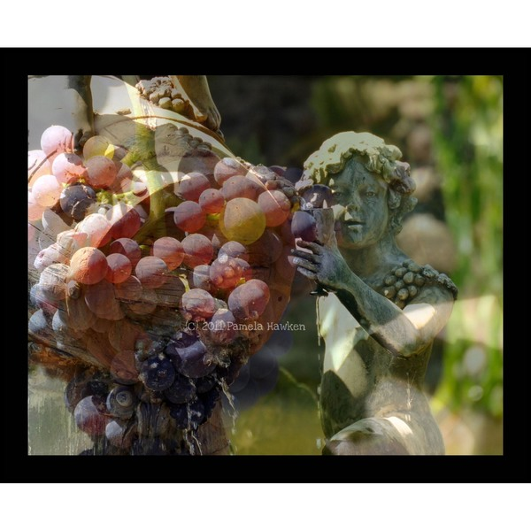 Cherub and Grapes Collage